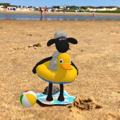Shaun the beach