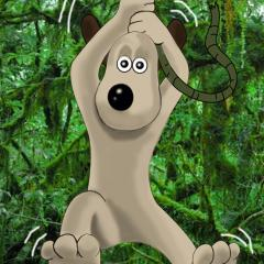 Gromit the Jungle